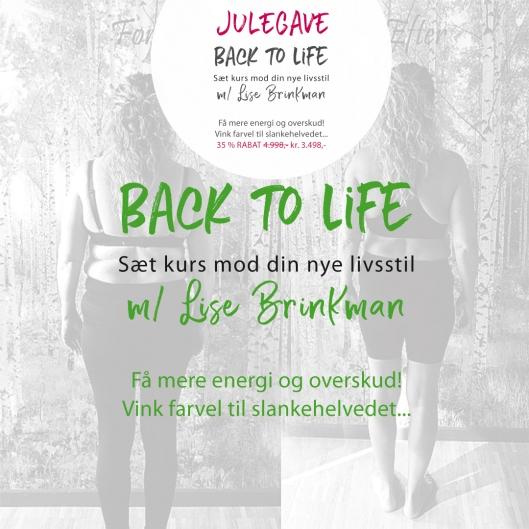 Julegaven-back-to-life_2019