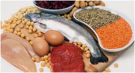 hvor-kommer-proteinerne-fra