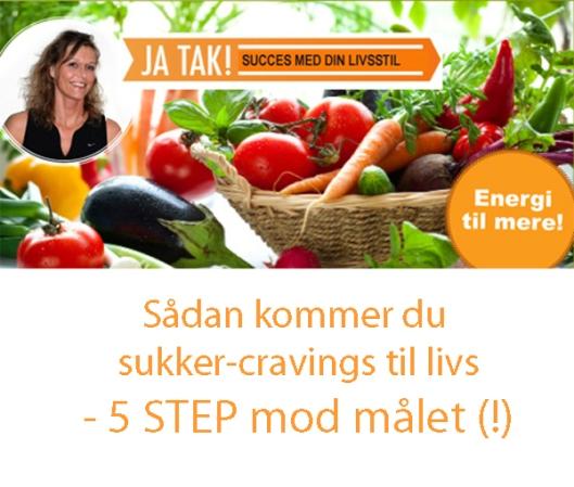 5-step_mod-sukker-craving