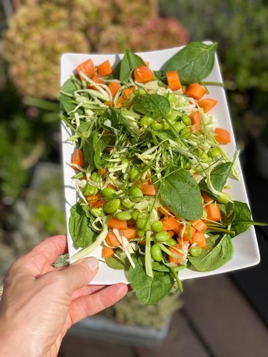 Sommersalat med spidskål og gulerod af Lise Brinkman